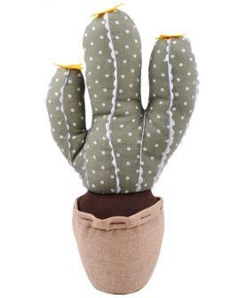 opritor usa cu cactus